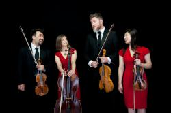 Festival of Chichester – String Dimensions - Festival of Chichester