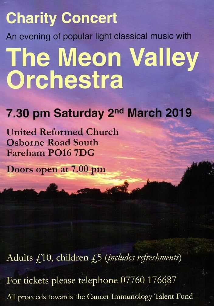 Meon Valley Orchestra charity spring concert - The Meon Valley Orchestra